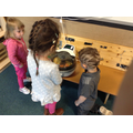 The children have been learning where potatoes