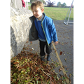 Make the biggest leaf pile you can in 5 minutes!