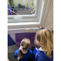 We enjoyed guessing what the mystery animal was!