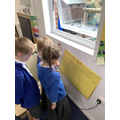 We wrote 'What am I?' poems.