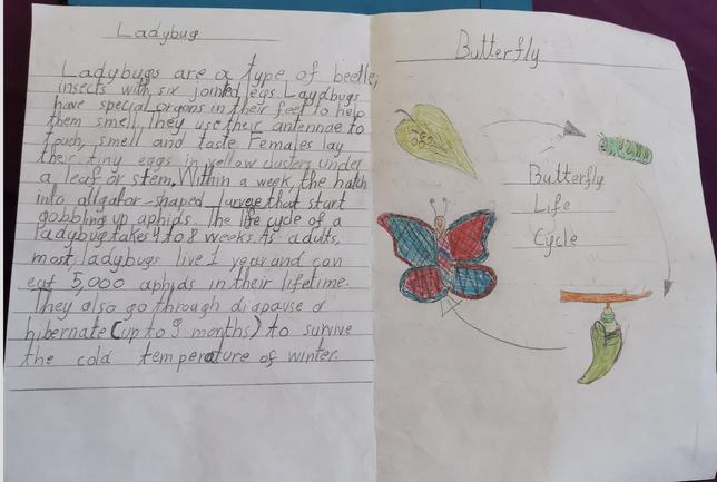 Maria's lovely leaflet!