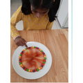 Anushka's Skittles experiment