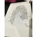 Siya's sketching!