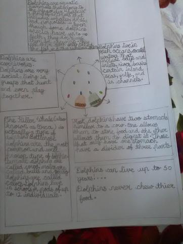 Valanka's Work