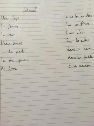 Where they live in French - Affan ⭐️⭐️⭐️