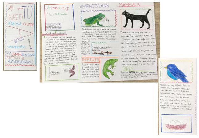 Fantastic leaflet by Rish!