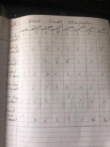 Leighton's Classification Work.