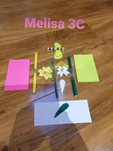 Melissa's equipment to make a bee pollinating.