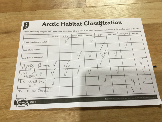 Kanav's Classification Work