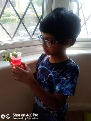 Manvith has been busy with science.