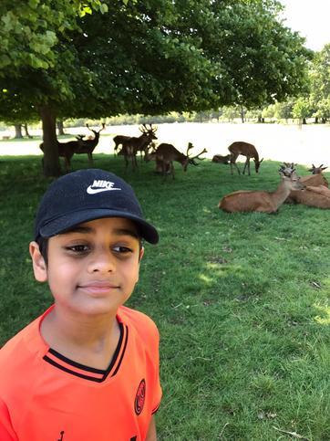 Affan goes Red deer spotting!!