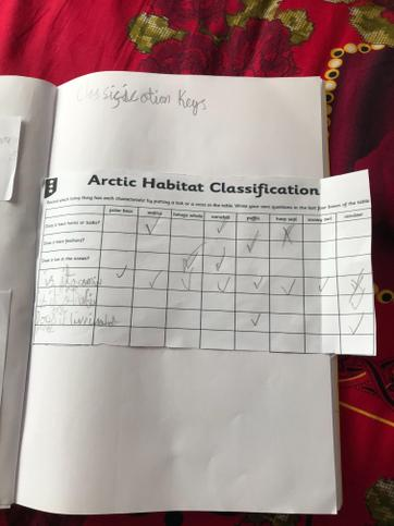 Tahmidur's Classificatin Work