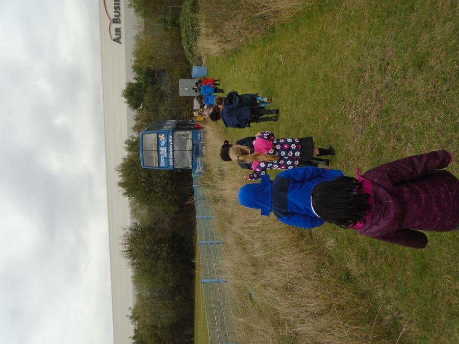 Exploring Kingfisher Island