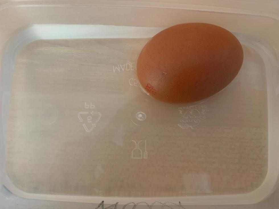 Water and egg