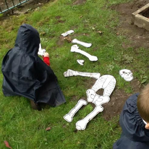 We have found out about our skeletons