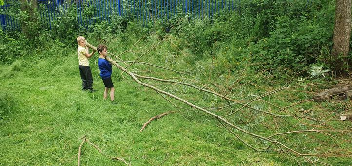 Pupils have been removing dead wood from the school's wooded area