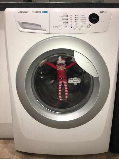 Elfie is just having a wash!