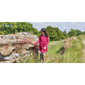 Sophie exploring an old Roman wall in Silchester.