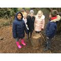 We found something 'circular'.