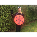 Which Ladybird is Miss Webster?