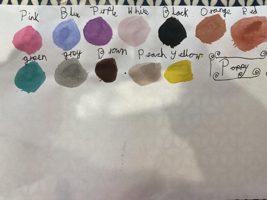 Poppy's  Colour Chart