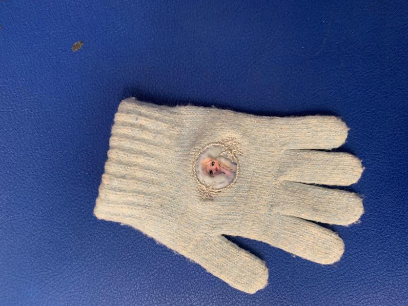 Frozen glove