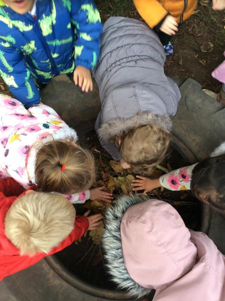 Making a nest for the hedgehog.