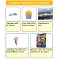 Myles: senses description