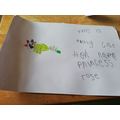 Holly would like a pet cat called Princess Rose.