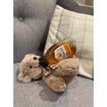 Naughty Bear Drinking Honey