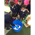 Floating and sinking investigations.