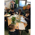 We made potions with herbs.