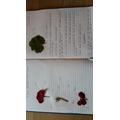 More of Pranav's science work