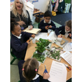 We created some interesting smelly potions.