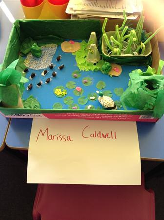 Winning Model 4S - Marissa Caldwell