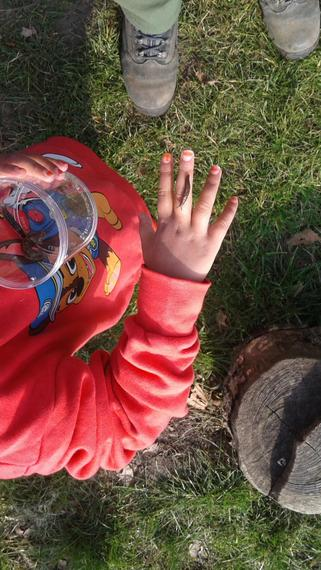 Finding mini beasts in forest school.