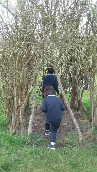 Exploring the school garden.