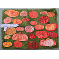 In Peridot Class we used watercolours to recreate the shapes and colours of pumpkins that