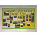 Forest School Development