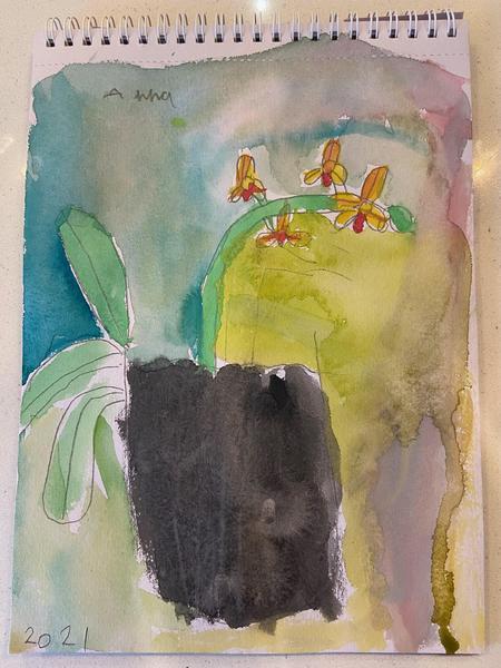Anna - Rabbit Class