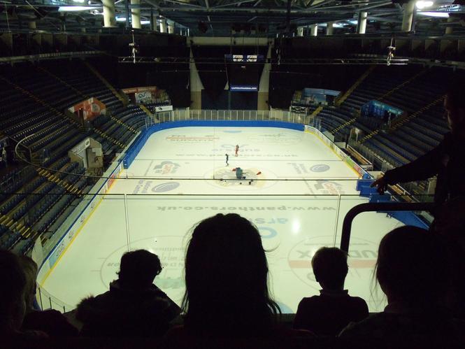 Panthers - ice hockey