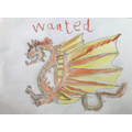 Wanted poster to help find the dragon that landed on the Birch classroom roof...