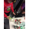 Testing liquids in Science to see if we could make candy canes disappear.