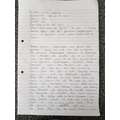 Florence Nightingale research by Ethan