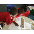 We explored a section of the Bayeux Tapestry