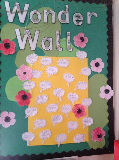 Poppy work - years 5 and 6
