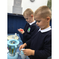 Counting fruit into the smoothie maker
