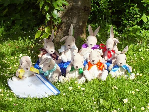 Meet our Rights Respecting Rabbits!