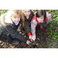 We are making models of Stone Age dwellings. We went into the school grounds to forage for some of the materials we needed.