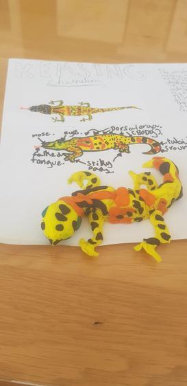 'Kemsing Lizard', Arianne, Class 3